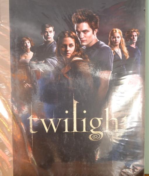 Twilight Poster Edward Summit Entertainment Neca Never