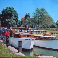 Shepperton Lock River Thames