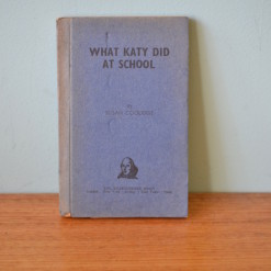 Book what katy did at school