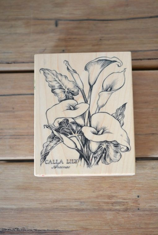 Vintage Wooden rubber ink stamp large Calla Lily Araceae USA